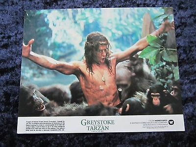 Greystoke The Legend Of Tarzan  lobby cards  - Christopher Lambert