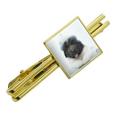 Newfoundland Puppy Dog Knitted Hat Square Tie Bar Clip Clasp Silver or Gold
