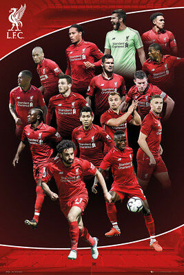 Framed Liverpool FC 2018-19 Season Players Poster New