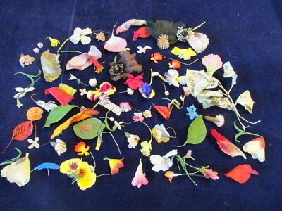 "Vtg Millinery Flower Collection 1-3"" Pink Yellow Purple Mixed Heads +Parts H2290"