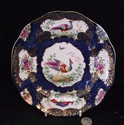 Booths Silicone Chin China England Pheasant Rich Blue Flowers And Gold!