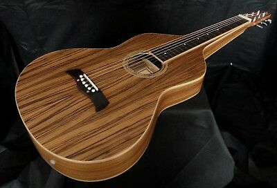 Weissenborn Electro Acoustic - Beautiful Zebra Wood