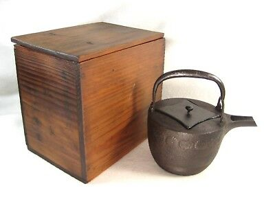 Antique Japanese Taisho Era Cast Iron Tea Choshi Sake Pot Tetsubin Chrysanthem