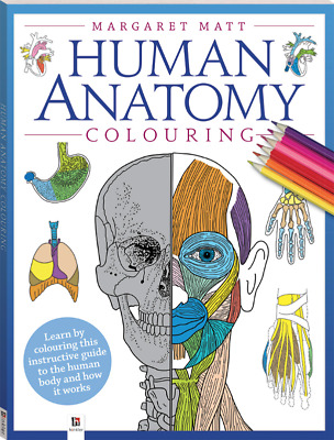 Human Anatomy Colouring Book Instructive Guide to Human Body by Margaret Matt