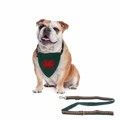 3 Pce Set Designer Welsh Wales Red Dragon Flag Bandana Dog Lead Medium Collar