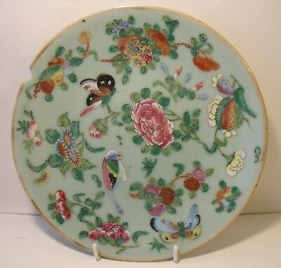 """7.25"""" Chinese Celadon Famille Rose Plate A/F"""