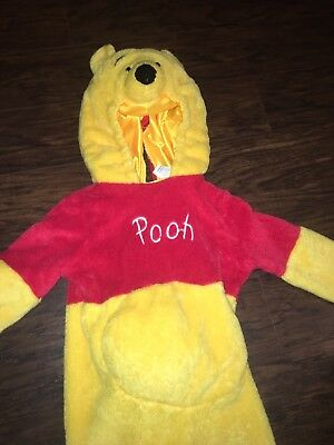 Winnie The Pooh Halloween Costume Size 3T - 4T
