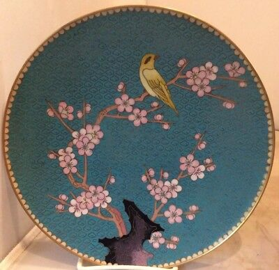 Cloisonne Robin Egg Blue bird and flower plate, 8 1/4""