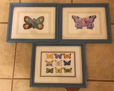 Anne Geddes Butterfly Baby Framed Pictures 8x10