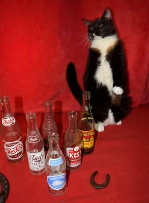 Old Vintage Bottle Collection Lot Pop Soda Pepsi Cola Kist Budd Royal Crown Glas