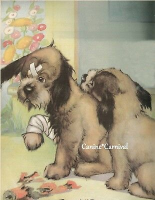 TERRIER PUPPIES WITH BANDAGES VETERINARIAN VINTAGE Art Print 1938 CUTEST PRINT