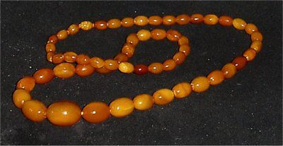 String of Butterscotch Baltic Amber Beads x 24 Grm - Good Colour