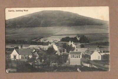 Gartly Looking West, Aberdeenshire, Postcard 1920's Unposted.