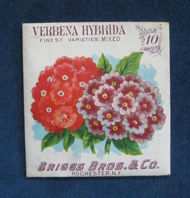 RARE Late 1890's Antique BRIGGS BROS. & Co. Seed Pack Packet: VERBENA Litho
