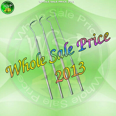 Stainless Steel 4 pc Equine Dental Probe Scalers Veterinary Instruments - New