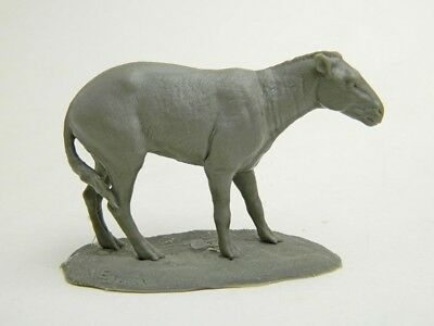 Eohippus, Hyracotherium Dawn Horse 1/7 scale resin model  Free shipping in USA