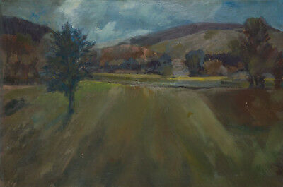 Gilbert Adams FRPS (1906-1996) - Early 20th Century Oil, Field in a Landscape