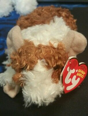 Ty-Beanie-Babies-REESE-Brown-and-White-Guinea-Pig-6in-RARE