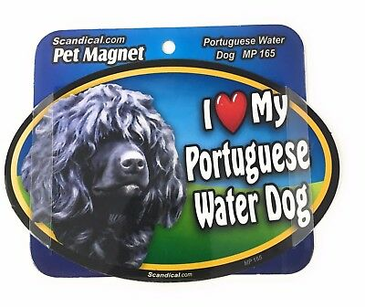 I LOVE MY PORTUGUESE WATER DOG  Magnet Gifts, Cars, Trucks. Lockers