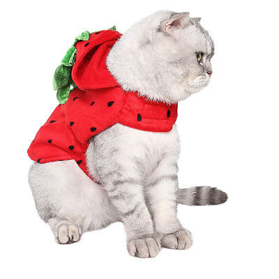 Cute Cat Costume Strawberry Hooded Clothes Halloween Daily Wear Pet Apparel