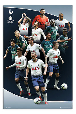 Tottenham Hotspur 2018 - 2019 Players Poster New - Maxi Size 36 x 24 Inch