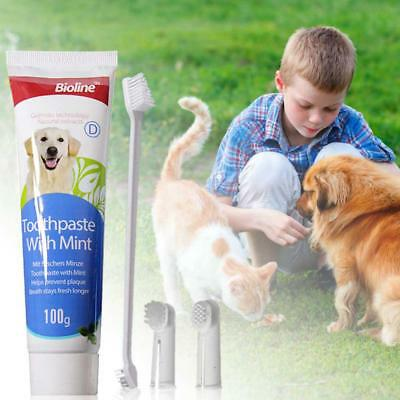 Pet Dental Clinic Tooth Paste Toothbrush Set For Dog Dental Care Mint Flavour