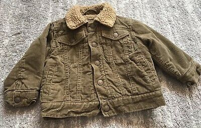 The Childrens Place Boys Size 18M Spring Fall Winter Jacket Warm Green