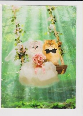 Bride & Groom CATS on Garden Swing Wedding Congrats Card