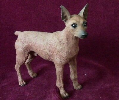Red Miniature Pinscher 100% Proceeds to Red Leash Rescue! Priced BELOW Wholesale