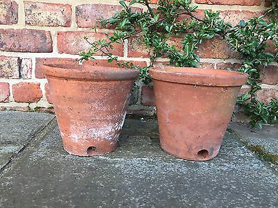 """Pair of Rare Old Hand Thrown Terracotta Plant Pots Side Drainage 8.5"""" Diameter"""