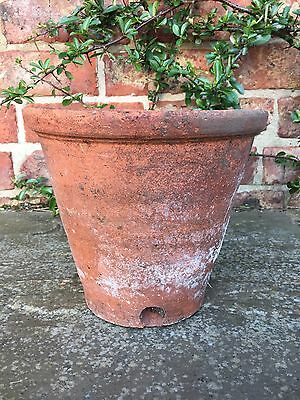 "Old Hand Thrown Vintage Terracotta Plant Pot Side Drainage 8.5"" Diameter"