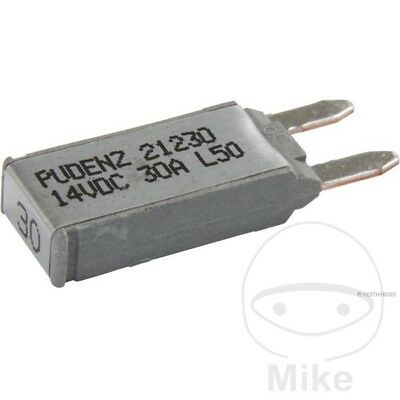 Automatic Cut Out Fuse - 30A Self Re-Setting 50295896