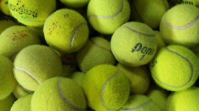 100 Quality Used Tennis Balls - Free Ground Shipping - Dog Toys