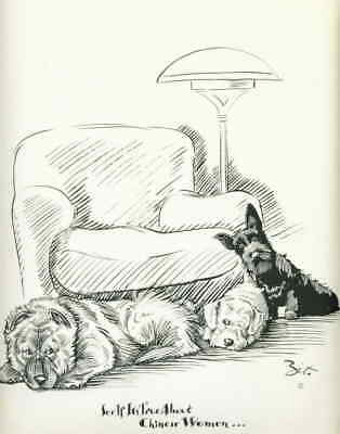 Dog Print 1937 Chow Chow Sealyham Terrier Scottish Terrier VINTAGE Funny