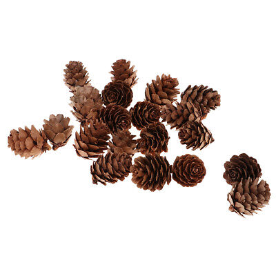 20 Pieces Natural Real Dried Pine Cones Pinecones for Christmas Party Decor