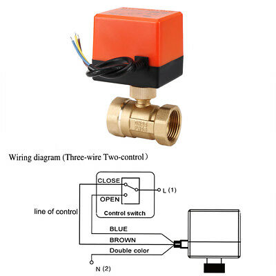 Motorized Ball Valve Brass DN15-25 AC220V 2 Way 3-Wire Electrical Ball Valve ly