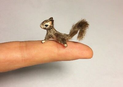 Dollhouse Miniature Realistic Squirrel OOAK animal - Malinik Miniatures
