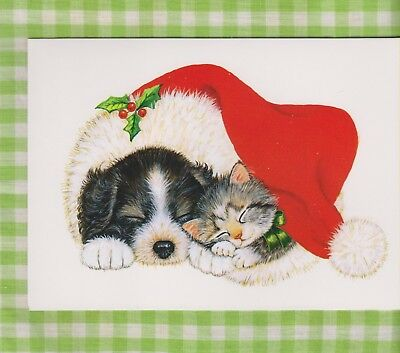 KITTEN & PUPPY Napping in Santa's Hat Christmas Card