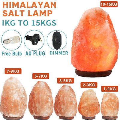 Himalayan Salt Lamp Natural Crystal Rock Shape Dimmer Switch Night Light 1-20kg