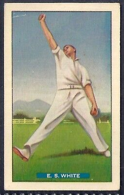 Hoadleys-Test Cricket Ers (M36 Diff)-#08- New South Wales - White