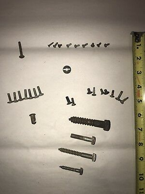 Vintage Lot of Gun Screws, Machine Screws, Wood Screws...Over 30 Pieces