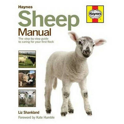 Haynes Sheep Manual By Liz Shankland Complete Step by Step Guide to Caring NEW