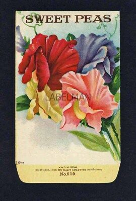 SWEET PEAS, Stock Antique Seed Packet, 1920's, Galloway Litho Co.  500