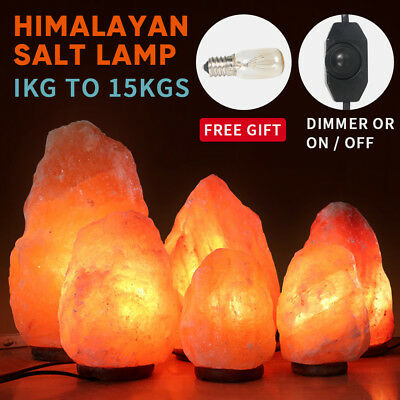 Himalayan Salt Lamp Natural Crystal Rock Shape Dimmer Switch Night Light 1-15 kg