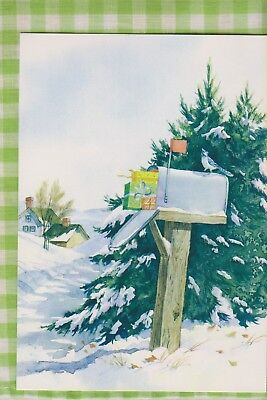 BLUE JAY on Rural Mail Box Full of Colorful Packages Christmas Card