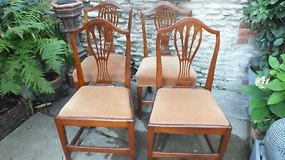 4 matched Georgian  fruitwood  dining chairs