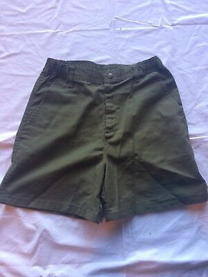 Boy Scouts Of America Shorts, Youth, Sz 18, Waist 29, Green