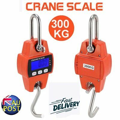 Portable Crane Scale 300kg 0.1kg Heavy Duty Electronic Hook Hanging Scale AU QWE