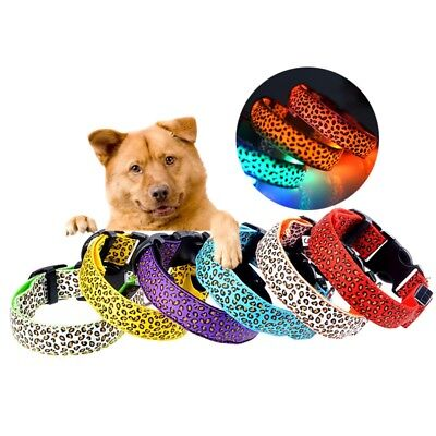 Pet Dog Collar LED Leopard Neck Strap Adjustable Puppy Cat Night Safety Necklace