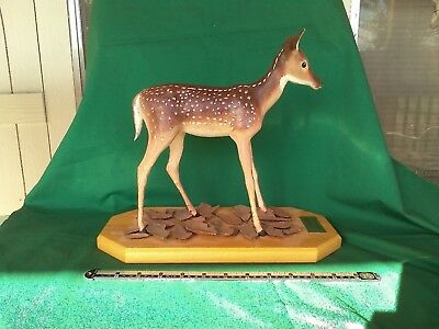 Original wood carving of a white-tail deer fawn.
